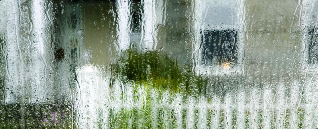 Czy rolety zewnętrzne chronią nasze domy?